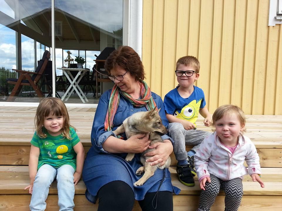 Ella, Farmor med Klara, Theo och Moa