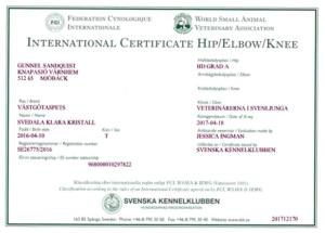 HD-certifikat