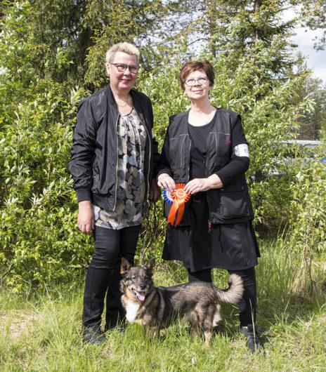 Krösaskogens Qia blev Finsk Champion och nordisk champion i Rovaniemi